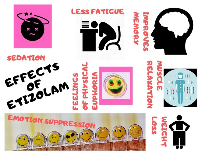 Effects of etizolam