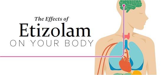 Etizolam effects on the body